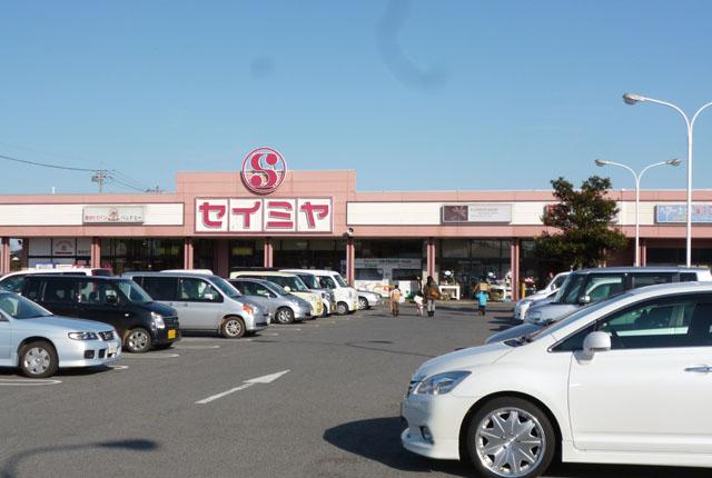 セイミヤ 成田芝山店約150m